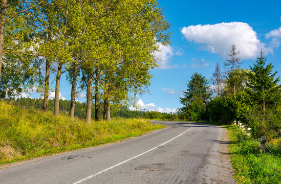 country road uphill in to the forest. lovely autumn scenery. travel by car concept