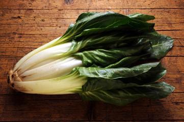 Beta vulgaris Lehtimangoldi Swiss chard Bietola Mangold Acelga Burak liściowy Bieta Bette 莙薘菜 סלק עלים Мангольд フダンソウ