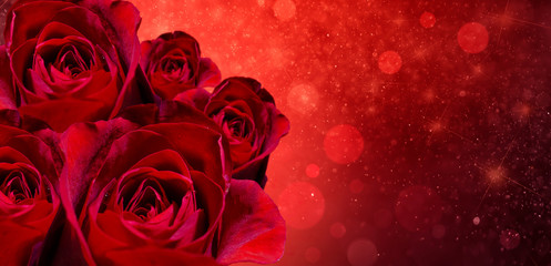 Banner Red rose bokeh red background Have space to enter text