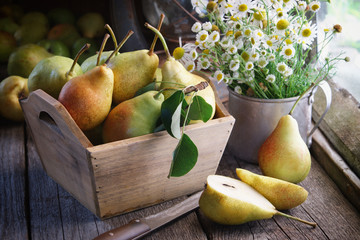 Fresh pears in a wooden crate, bouquet of daisies on wooden table near windows inside the retro village house.