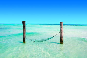 Wall Mural - Hammock in shallow turquoise water from above