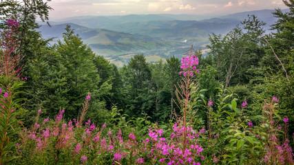 Mount Gemba in the Carpathians