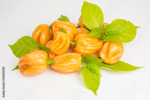 chili pepper habaneros which are very hot and rated 100,000