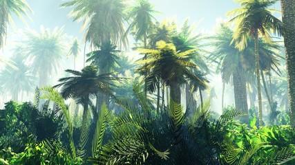 Naklejka premium Tropikalna dżungla we mgle. Palmy rano.