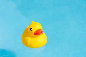 A single yellow rubber duck floats in a paddling pool