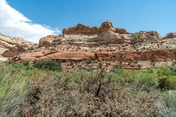 Hiking Trail Escalante Utah