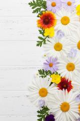 Garden flowers on wooden background
