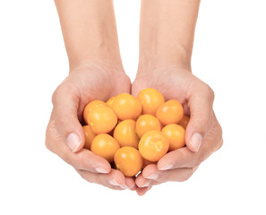 hand holding Cape gooseberry isolated on white background