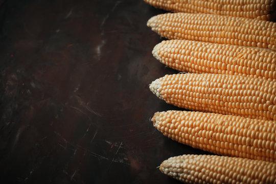 Corn on a black background.