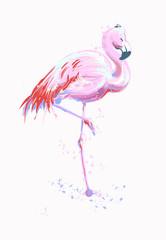 Vector illustration pink flamingo. Exotic bird. Cool flamingo decorative sketch freehand design element. Lovely flamingo