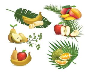 Set of realistic fruits, illustration of tropical foliage.
