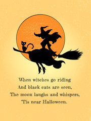 The pretty witch flies on a broom with a black cat against the background of the full moon. Vector illustration. The Halloween greeting concept.
