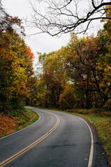 Autumn color along Skyline Drive in Shenandoah National Park, Virginia