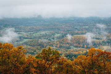 Foggy autumn view from the Blue Ridge Parkway, in Virginia.