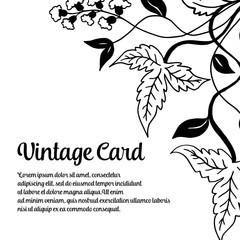 Floral background vintage card design vector illustration