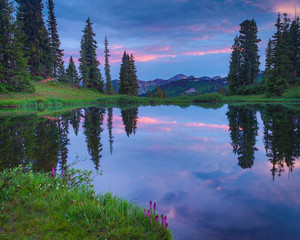 Purple Mountains Majesty in Crested Butte Colorado