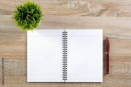 Fountain Pen Or Ink Pen With Notebook Paper And Little Decoration