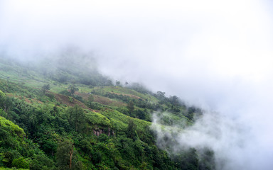 Beautiful mountains and rural scenery in raining. Mist covered mountains early in the morning. View from the top view of mountains.