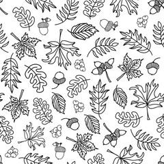 Seamless vector doodle leaves background. Black leaves on a white background. Acorn, oak tree, maple tree pattern. Monochrome doodle leaf print. Fall background, Thanksgiving, Seasonal print, November