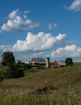 Traditional red barns on a midwestern farm