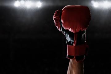 Boxer winning the match