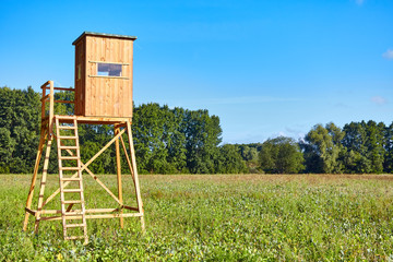 Papiers peints Chasse Forest edge with a wooden hunting deer blind.