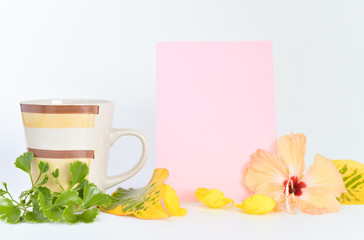 cofee cup and coloured board for copy space isolated on white background.