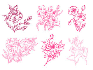 hand drawn floral decoration