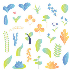 Modern plants vector illustration background elements collection set. Leaves, tree, flowers and other colorful botany, ecology and bio herbs. Nature beautiful green flora. Isolated organic elements.