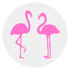 Circle web icon on isolation background. Flamingos. Cartoon birds