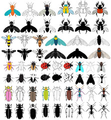 insects, flies, dragonflies, beetles, large set