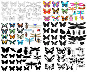 insects, butterflies, beetles, dragonfly, collection, set of silhouettes