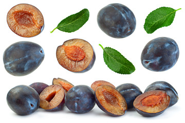 Blue plum fruit collection on white