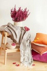 colorful cushions throw cozy home autumn mood flower