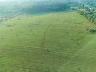 Aerial view of a field with bales of mown hay