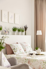 Side view of a bed, pillows, tray with a pot, plants on a shelf and photos on the wall