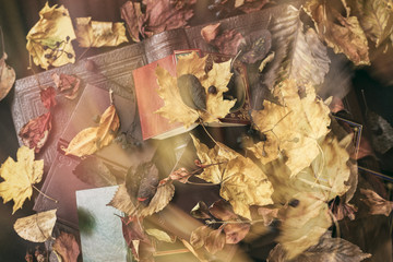 Abstract blurred different books, top view, covered with dry autumn leaves, sunny fall day, vintage background. Concept of reading, back to school, education, autumn