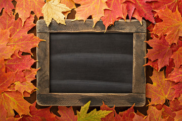 Fall background with a chalkboard