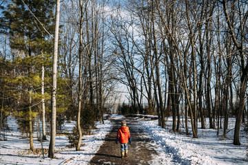 Rear view of boy walking on road amidst bare trees during winter