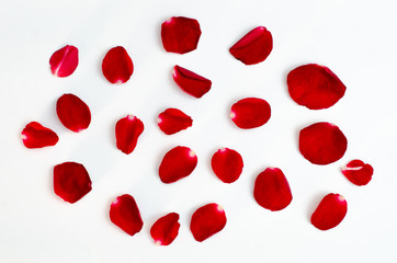 Rose petal isolate on a white background Red design heart