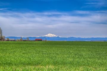 Mountain landscape picture in field