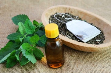 Melissa officinalis essence and dry herb photo.