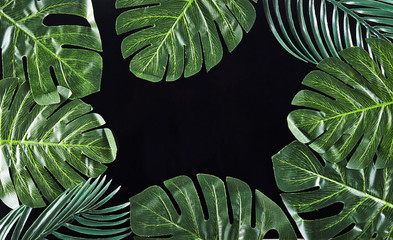 Green palm leaves on background