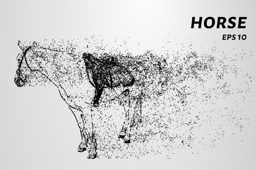 Horse of the particles. Horse concept design