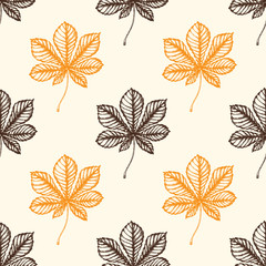 Autumn pattern with chestnut leaves