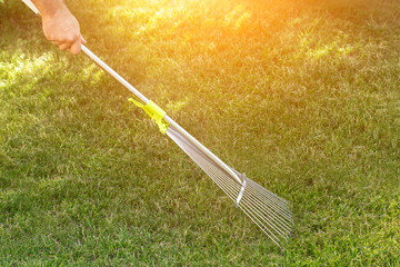 Gardening. The adult rakes the green lawn with a rake. Lawn care. back yard