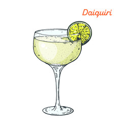 Daiquiri cocktail illustration. Alcoholic cocktails hand drawn vector illustration.
