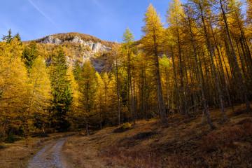 Vue panoramique sur les montagnes Alpes en automne. France.