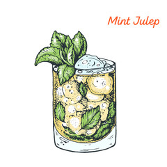 Mint Julep cocktail illustration. Alcoholic cocktails hand drawn vector illustration.