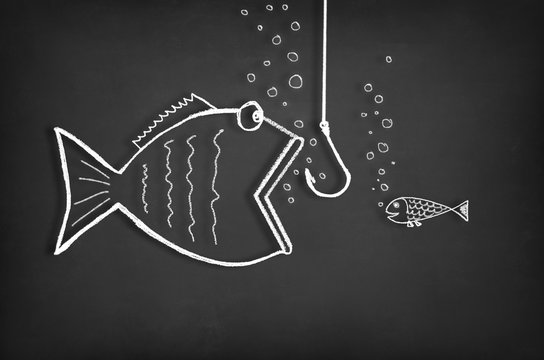 Taking the bait